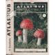 Atlas hub jedlých a nejedlých, 1. díl