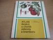 Atlas škůdců a chorob zeleniny a bramboru (1987