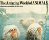 The Amazing World of Animals