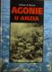 Agonie u Anzia