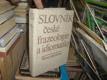 Slovník české frazeologie a idiomatiky