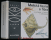 Mořská fauna a flóra