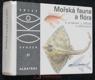 Mořská fauna a flóra : pro čtenáře od 12 let
