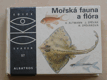 Mořská fauna a flóra (1984)