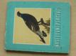 Naše lovné ptactvo (1962) il. Demartini