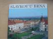 Slavkov u Brna - město a okolí (1987)