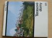 Terasové domy (SNTL 1976)