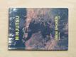 Ninjutsu - Umění špionáže 1. díl  (1992)