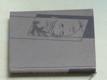 Matčin osud (1941) Toyen