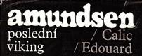 Amundsen - poslední viking