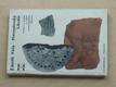 Přemyslovský Libušín - archeologický výzkum (1973)