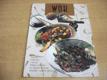 WOK. Chutné, kořeněné a rychlé pokrmy opečené za stálého míchání