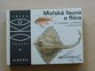 Altmann - Mořská fauna a flóra