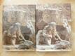 Dějiny českého výtvarného umění od počátků renesance do závěru baroka II.1, II.2