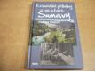 Kriminální příběhy ze staré Šumavy no