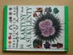 Kaktusy a sukulenty - 100 praktických rad