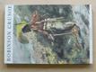 Pleva - Robinson Crusoe (1983) il. Burian