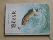 Blesk (SNDK 1958) příběh pstruha
