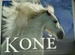 Původ a vlastnosti 100 plemen koní z celého světa