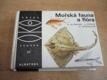 Mořská fauna a flóra , ed. OKO, sv. 57