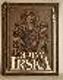 Dějiny Irska