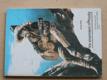 Ve znamení náhody (1992) Knihy táborových ohňů 2