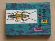 Kapesní atlas brouků s určovacím klíčem (1968)