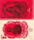 Tři mušketýři, I-II