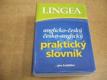 Anglicko-český, česko-anglický praktický slovník ... pro každého