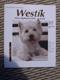 Westík - West highland white teriér