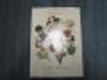 Pohádka o Květušce a její zahrádce plná zvířátek, ptáků, květin a nakonec dětí