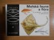 OKO (57): Mořská fauna a flóra