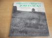 Přívětivá krajina Josefa Suka fotografi