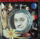 Dobře utajené housle (2 LP)