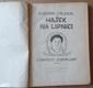 Vladimír Stejskal: Hašek na Lipnici