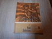 Král Babylónu - Jerzy Edigey