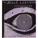 Kudělka, V.: Malý labyrint literatury