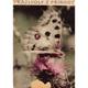 Seget, J.: Kapitoly z přírody