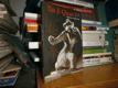 Tai Ji Quan - otázky a odpovědi