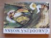 Čarodějná mošna (1981) il. Trnka