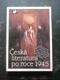 Hoznauer - Česká literatura po roce 1945