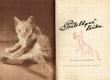Jarmila Otradovicová - Přítelkyně kočka