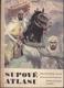 Supové Atlasu, dobrodružný román