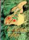 Kouzelná tykev - Pohádky z Dálného východu