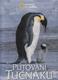 Putování tučňáků (National Geographic )