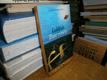 Goldfish - Zlaté rybičky (paralelní text)