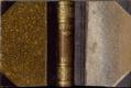 Časopis KVĚTY - 1893 - I. - II. - ročník XXII.