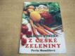 Letní menu. Vaříme pestře z české zeleniny (19