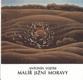 Vojtek - ANTONÍN VOJTEK MALÍŘ JIŽNÍ MORAVY. - 1994. - 8846681801
