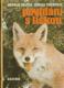 Povídání s liškou